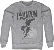 Phantom Jump Distressed Sweatshirt, Sweatshirt