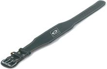 Abilica WeightLifting Belt