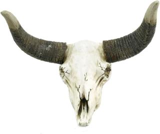 Victoria's Design Skalle med horn för vägg