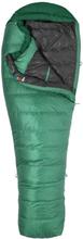 Marmot Palisade Long Dunsovsäck Grön 198R