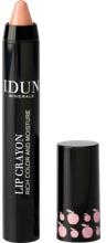 IDUN MINERALS Lip Crayon Agnetha 2.5 g