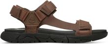 Timberland Men's Windham Trail Sandal Herr Sandaler Brun US 7/EU 40