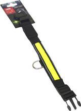 Hundhalsband Active Canis med LED-ljus, Svart/grön