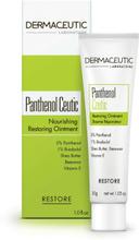 DermaCeutic Panthenol Ceutic 30g