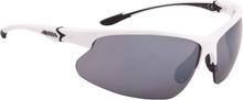 Alpina Dribs 3.0 Cykelbriller, white-black 2020 Briller