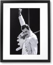 """Framed 1986 Freddy Mercury On Stage Print, 16"""" X 20"""" - Black"""