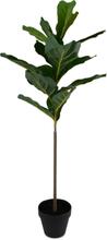 Konstväxt - Fiolfikus 87 cm