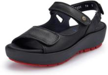 Sandaler från Wolky svart