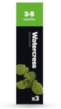 Plantui Watercress, Spiselig plante, Watercress, Genopfyldning, Hurtig producent (3-5 uger), 3 stk, Kasse