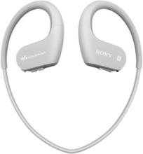 Walkman NW-WS623