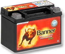 BANNER RUNNING BULL – BACKUP AGM 9 AH