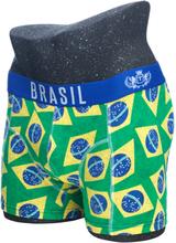 Herrboxer regular, BRASIL