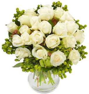 Eksklusive hvite roser