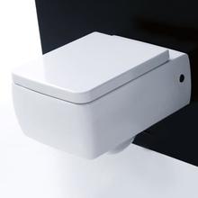 Lavabo Ego Vägghängd toalett 360x500mm inkl. ECS
