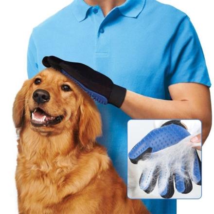 Koiran Hierontaharja / harja koiralle ja kissalle