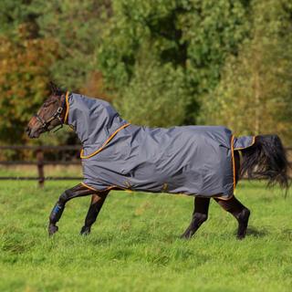 Horseware Amigo Hero-6 utetäcke Plus Lite