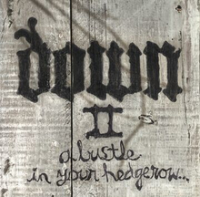 Down - Down II - A bustle in your hedgerow -CD - multicolor