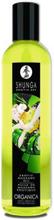 Erotisk massageolja Green Tea 250ml
