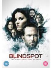 Blindspot: Staffel 5