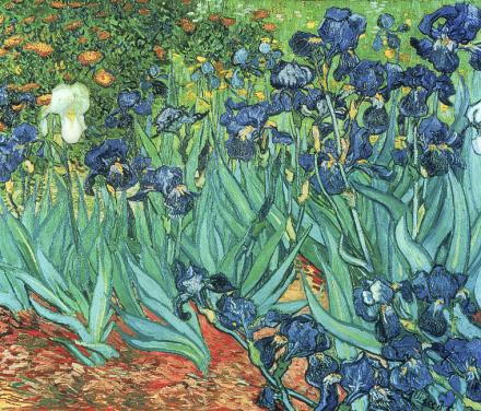 Irises, Vincent van Gogh Tapetit / tapetti 100 x 100 cm