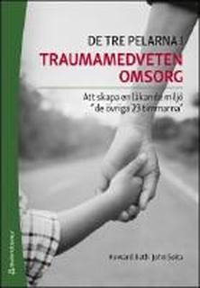 De tre pelarna i traumamedveten omsorg : Att skapa en läkande miljö