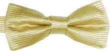 Barnfluga BF048