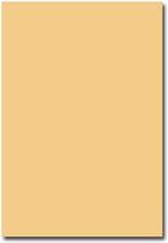 Pollen Brevpapper A4 - 50 st - Karamell