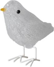 Fugle LED