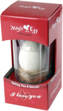 Magic Egg I Love You
