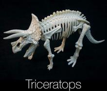 Dinosaur Kaivaussetti Triceratops