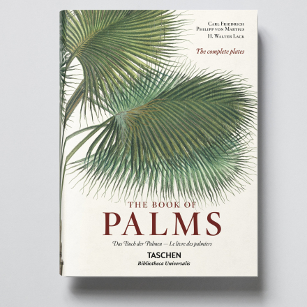 The Book of Palms XL