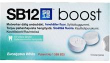 SB12 Boost Eucalyptus 10 st