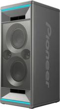 Pioneer Club 5 högtalare Silver