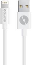 Champion Ladd&Synk kabel Lightning 3m V