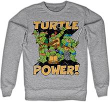 TMNT - Turtle Power! Sweatshirt, Sweatshirt