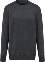 Rundhalsad tröja i 100% kashmir i Premium-kvalitet från Peter Hahn Cashmere grå