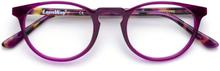 Jump - Purple Purple Tortoise