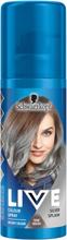 Färgspray Silver Splash - 68% rabatt