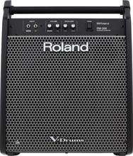 Roland PM-200 Monitor