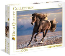 1000 pcs. High Color Collection FREE HORSE