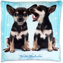 Hundar Chihuahua - Kudde 40x40cm Blå