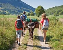 GPS Eselwanderung fuer Familien im Sauerland