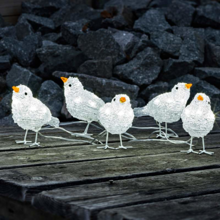 Fin udendørs dekorativ LED fuglekvintet