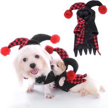 Halloweenkostüm für Haustier