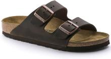 Birkenstock Arizona Oiled Leather Regular Unisex Sandaler Brun 39