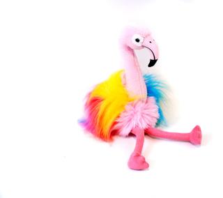 Flamingo, Rosa, Aurora