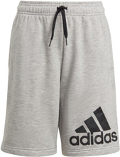 adidas Essentials Big Logo Shorts Jungen 176
