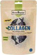 Rawpowder Collagen 175 g