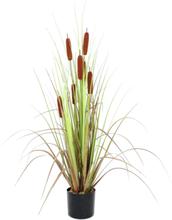 Bulrush, artificial plant, 120cm