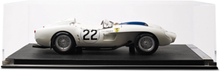 Limited Edition Ferrari 250 Tr (1958) Lemans Lucy Belle 2 1:8th Model Car - White